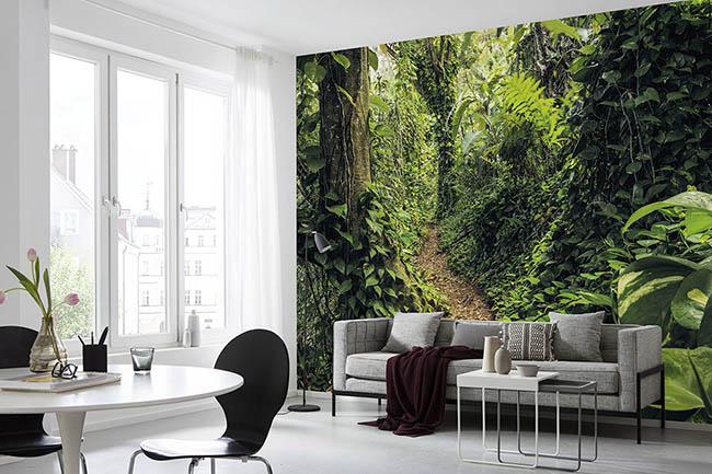 Green tones on the wall: photomurals with nature, jungles and forests
