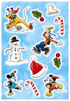 Mickey Ice slide