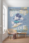 Mickey Brave the Wave