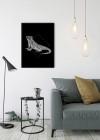 Iguana Black