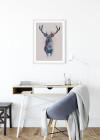 Animals Forest Deer