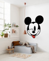 Mickey Head Optimism