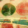 Rolls Rolling apricot