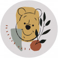 Winnie Pooh Smile