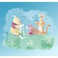 Winnie Pooh Picnic
