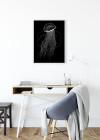 Jellyfish Black