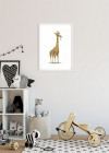 Cute Animal Giraffe