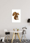 Cute Animal Squirrel