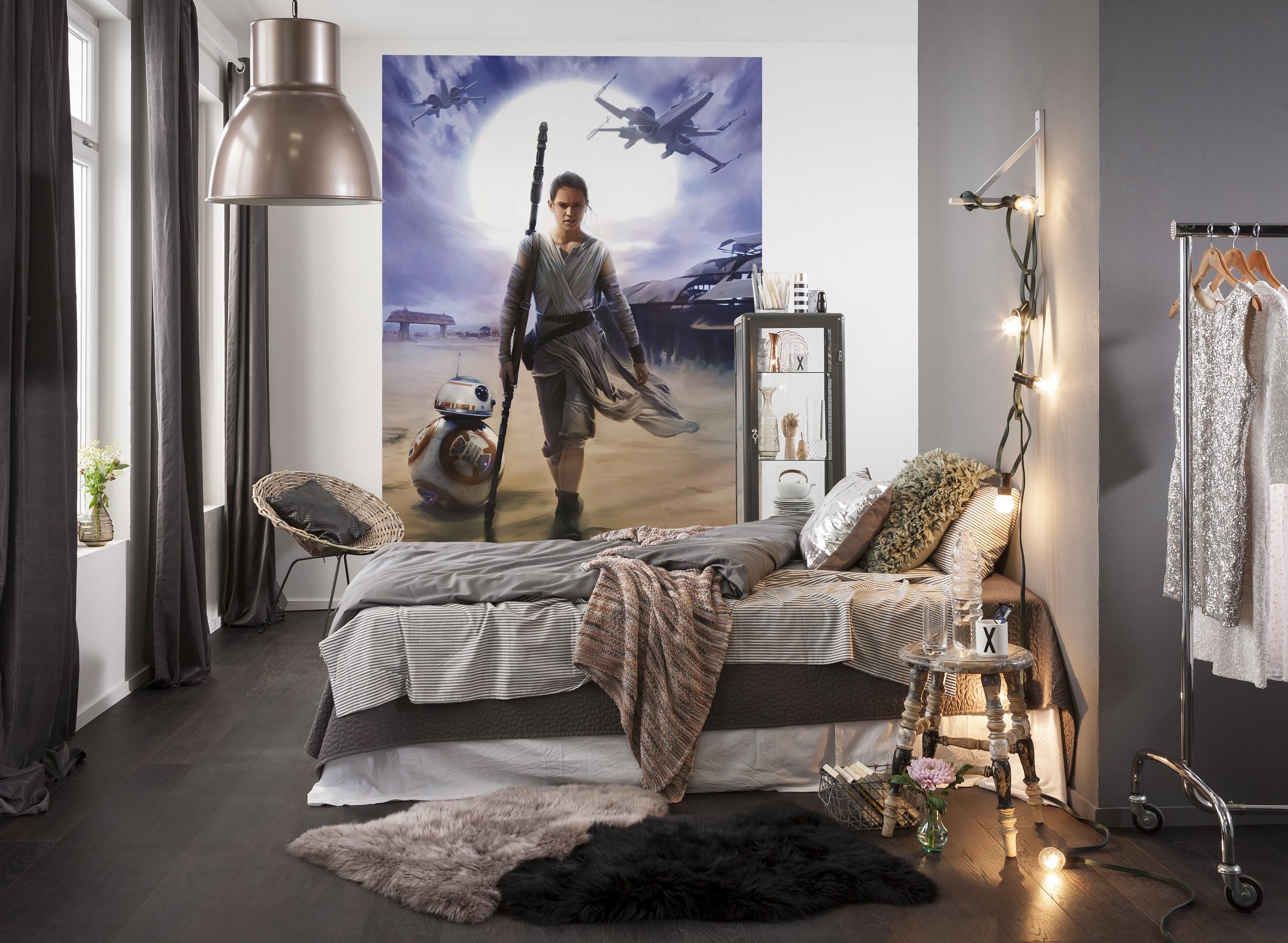 fototapete star wars rey von komar disney star wars. Black Bedroom Furniture Sets. Home Design Ideas