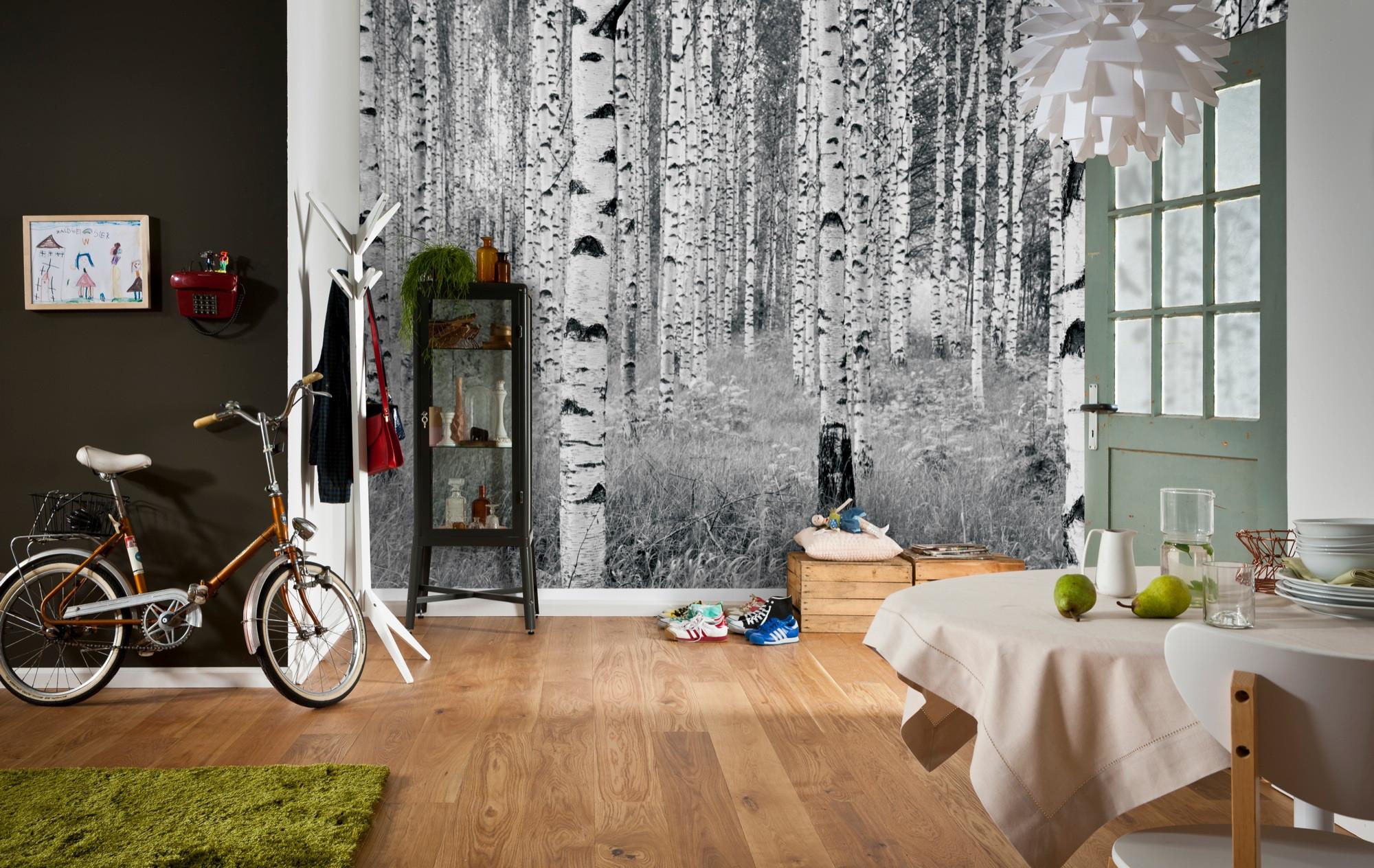 """Vliestapete """"Woods"""" (XXL4-023) von Komar"""