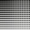 Griddy greyblack-grey