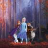 Frozen Autumn Glade