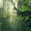 Tropenwelten
