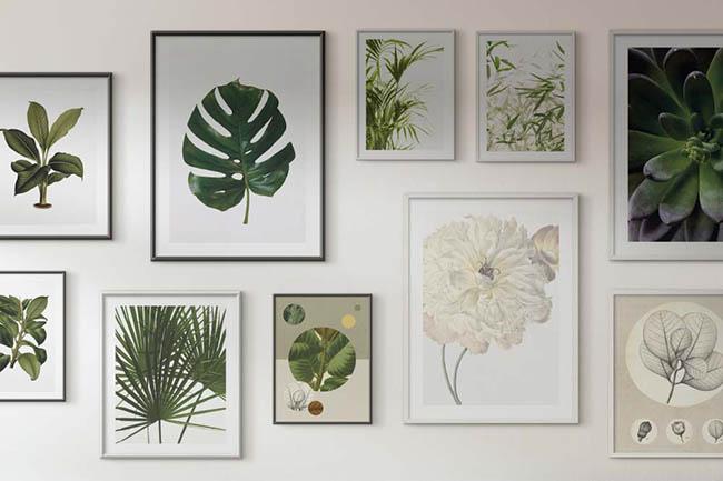 Botanik die begeistert: natürlich schöne Blätter Wandbilder