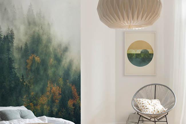 Wandbilder mit Wäldern und Dschungel