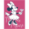 Minnie Mouse Girly