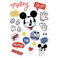 It's a Mickey Thing